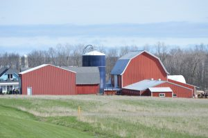 Wallace Dairy Farm LLC