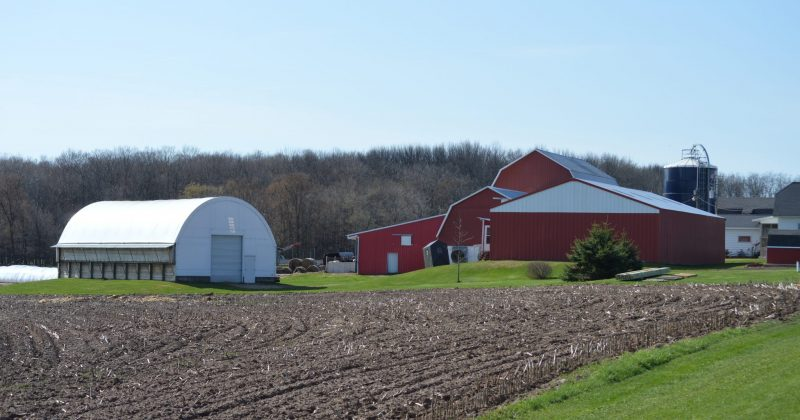 Farm Facts – 2017 Hosts: Wallace Dairy Farm