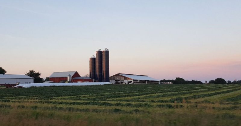 Farm Facts – 2018 Hosts: Junion Homestead Farm